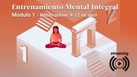 Etrenamiento Mental Integral Curso Streaming